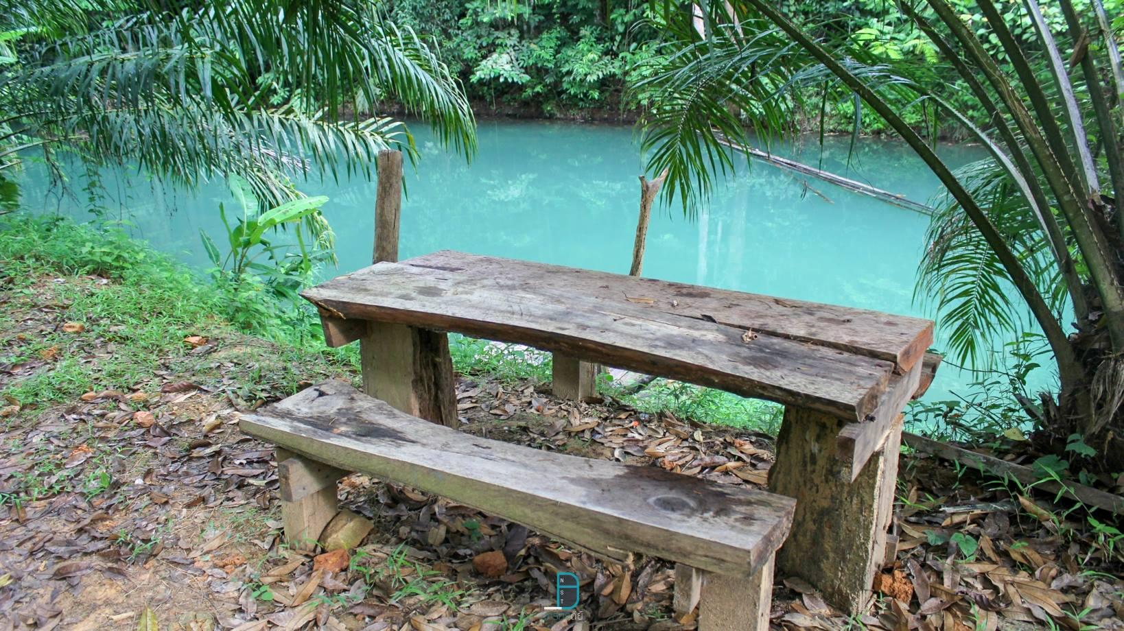 บ้านสวนทองคำโฮมสเตย์ ทุ่งสง แหล่งน้ำใสสีฟ้า ล่องแพ พายเรือ อาหารพื้นบ้านรสเด็ด สัมผัสธรรมชาติ นครศรีดีย์