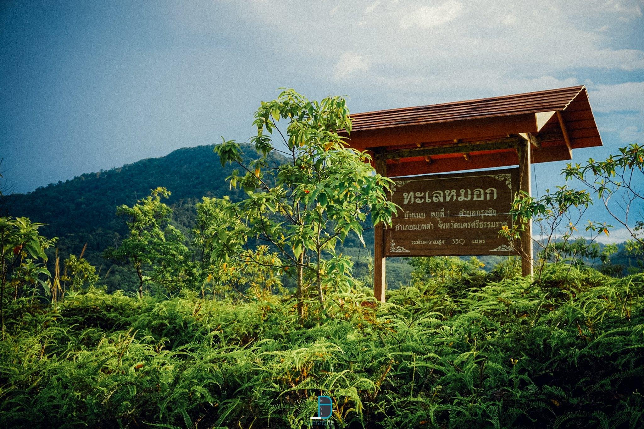 11 ที่เที่ยวธรรมชาติ ลำธาร ป่าเขา นครศรีธรรมราช วันหนึ่งฉันเดินเข้าป่า นครศรีดีย์
