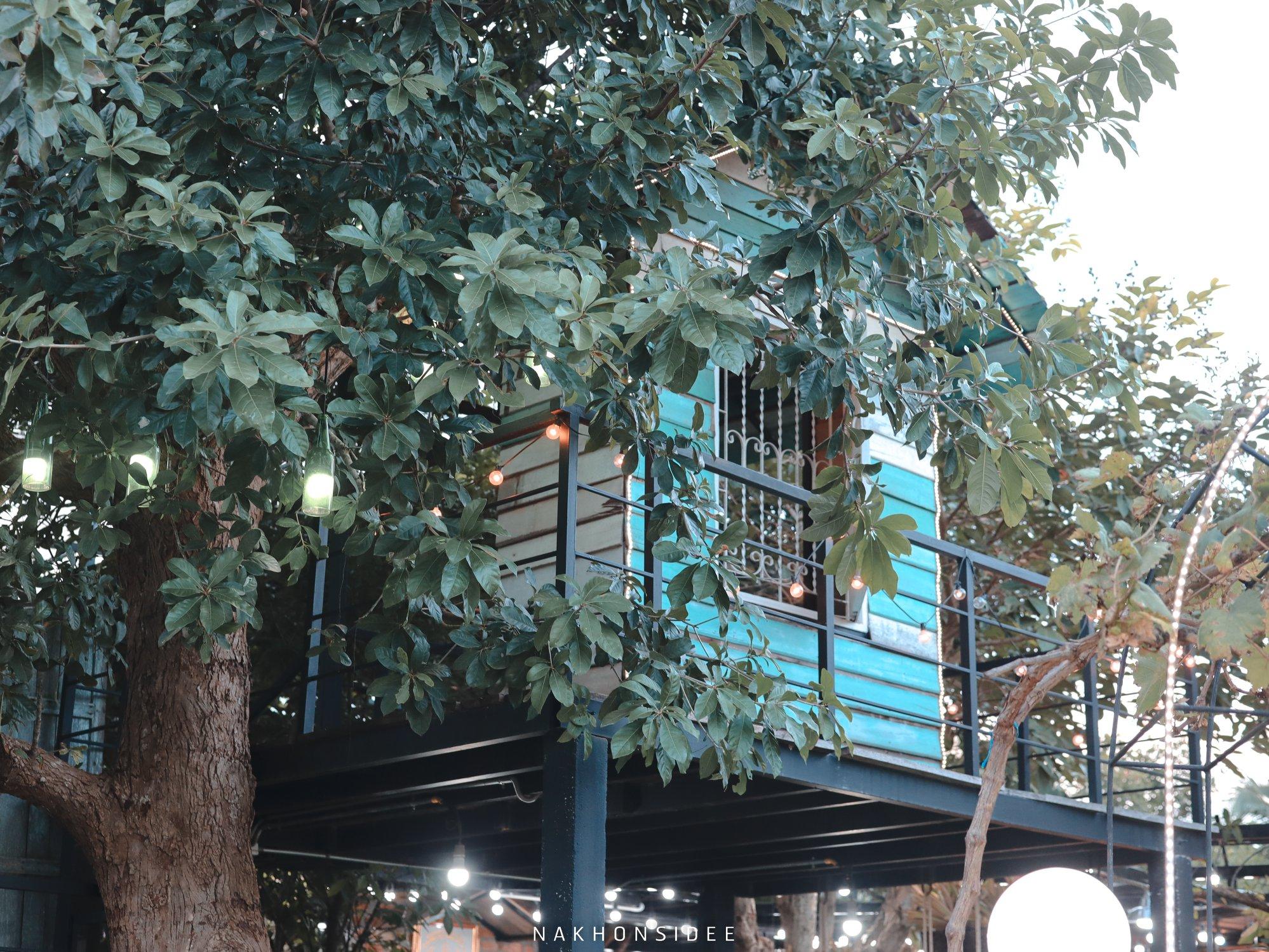 ต้นไม้สวยยย  treestation,ร้านอาหาร,คาเฟ่,กลางป่า,อร่อย,ของกิน,นครศรีธรรมราช
