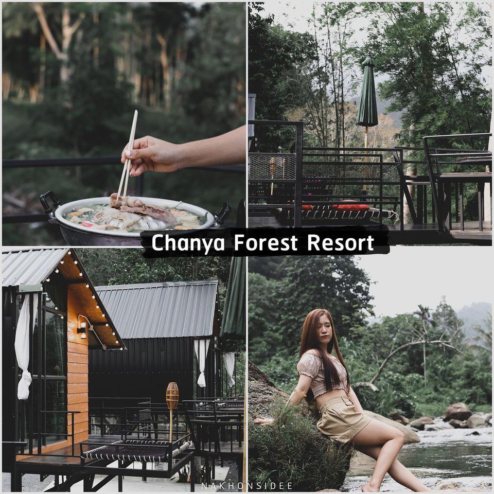 Chanya-Forest-Resort-รีสอร์ทเปิดใหม่ริมลำธารหมูกะทะฟินๆ-คลิกที่นี่   ร้านเปิดใหม่,นครศรีธรรมราช,ชาบู,ปิ้งย่าง,คาเฟ่,ร้านอาหาร,จุดเช็คอิน,วิวหลักล้าน