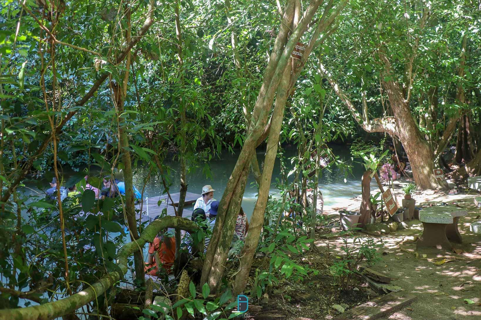 สวนตาสรรค์ แหล่งเช็คอินยอดฮิตที่ได้ชื่อว่า-สปาปลาตอดครับ-ปกติน้ำจะใสมากแต่แอดมาวันนี้ฝนตกครับเลยขุ่นๆหน่อย ที่พักขนอม,นครศรี,ขนอม,วิวหลักล้าน,ทะเล,ธรรมชาติ,ภูเขา,โรงแรม,รีสอร์ท
