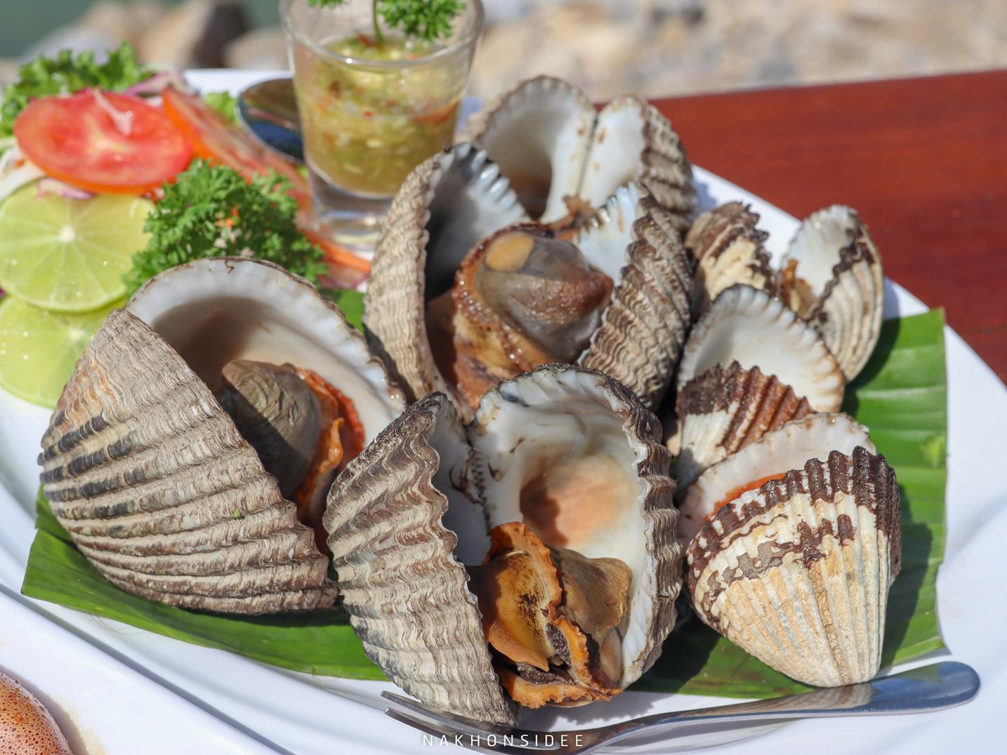 หอยแครงไซส์ยักษ์ คือยักษ์จริงๆ ที่พัก,ขนอม,เปิดใหม่,อ่าวขนอม,รีสอร์ท,ซีฟู๊ด,อร่อย,หาดในเพลา