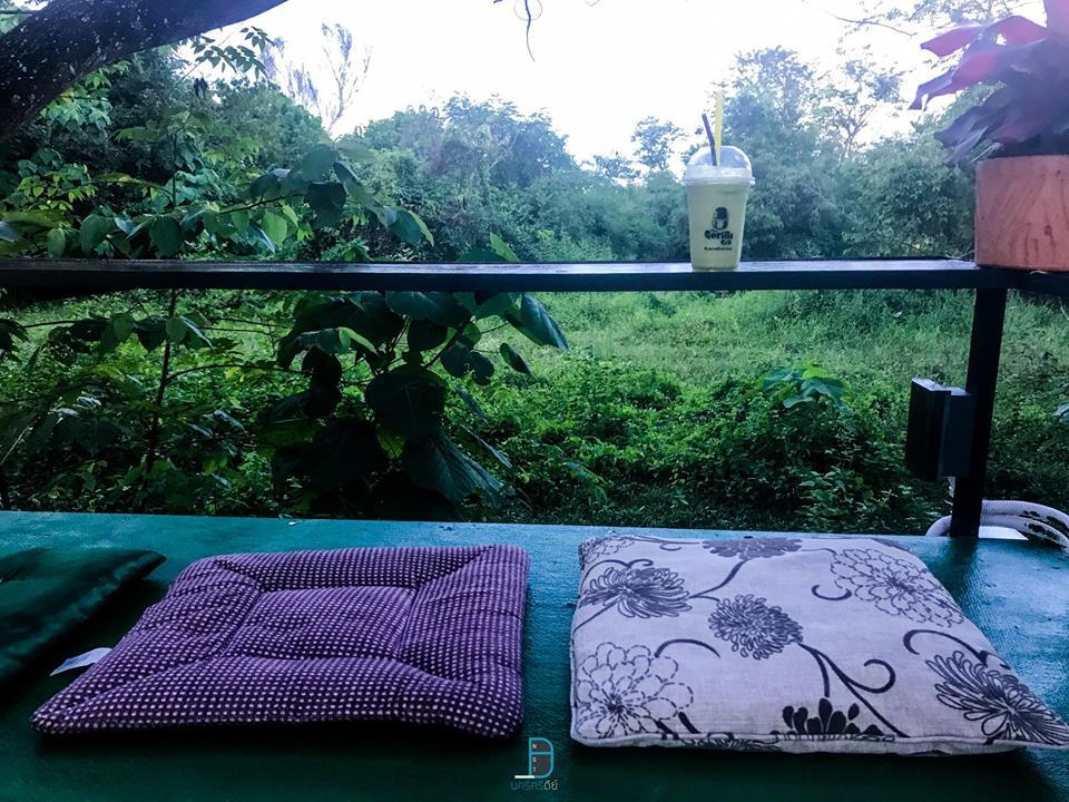 ภารกิจตามหาลิงกอริลล่า ในคาเฟ่ลึกลับ at The Gorilla cafe  นครศรีดีย์