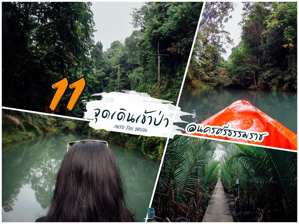 11 ที่เที่ยวธรรมชาติ ลำธาร ป่าเขา นครศรีธรรมราช วันหนึ่งฉันเดินเข้าป่า
